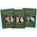 Netter Collection of Medical Illustrations- Musculoskeletal System Package: Volume 6