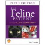 Feline Patient