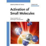 Activation of Small Molecules: Organometallic and Bioinorganic Perspectives