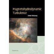 Magnetohydrodynamic Turbulence