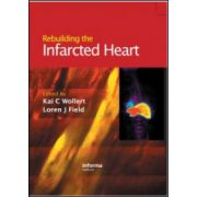 Rebuilding the Infarcted Heart