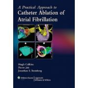 Practical Approach to Catheter Ablation of Atrial Fibrillation