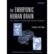 Embryonic Human Brain: An Atlas Of Developmental Stages
