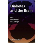 Diabetes and the Brain (Contemporary Diabetes)