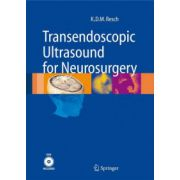 Transendoscopic Ultrasound for Neurosurgery
