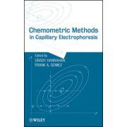 Chemometric Methods in Capillary Electrophoresis
