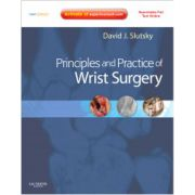 Principles and Practice of Wrist Surgery (with DVD)