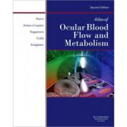 Atlas of Ocular Blood Flow: Vascular Anatomy, Pathophysiology, and Metabolism