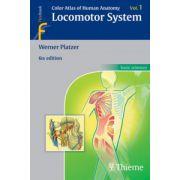 Color Atlas of Human Anatomy: Volume 1: Locomotor System
