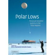 Polar Lows: Mesoscale Weather Systems in the Polar Regions