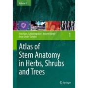 Atlas of Stem Anatomy in Herbs, Shrubs and Trees, Volume 1