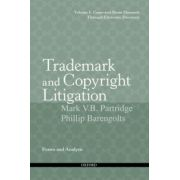 Trademark and Copyright Litigation
