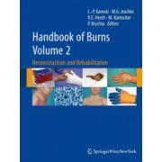 Handbook of Burns - Volume 2. Reconstruction and Rehabilitation