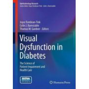 Visual Dysfunction in Diabetes: Science of Patient Impairment and Health Care (Ophthalmology Research)