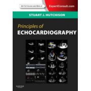 Principles of Echocardiography and Intracardiac Echocardiography