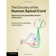 Circuitry of the Human Spinal Cord: Spinal and Corticospinal Mechanisms of Movement