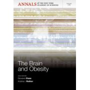 Brain and Obesity