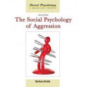 Social Psychology of Aggression