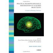 Practical Neuropsychological Rehabilitation in Acquired Brain Injury: A Guide for Working Clinicians (Brain Injuries)