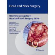 Head and Neck Surgery (Otorhinolaryngology - Head and Neck Surgery Series)