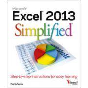Excel 2013 Simplified