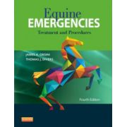 Equine Emergencies: Treatment and Procedures