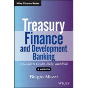 Treasury Finance and Development Banking: A Guide to Credit, Debt, and Risk