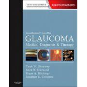 Glaucoma, 2-Volume Set
