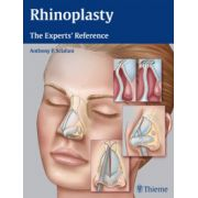 Rhinoplasty: Experts' Reference