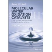 Molecular Water Oxidation Catalysis
