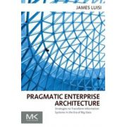 Pragmatic Enterprise Architecture: Strategies to Transform Information Systems in the Era of Big Data