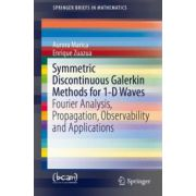 Symmetric Discontinuous Galerkin Methods for 1-D Waves: Fourier Analysis, Propagation, Observability and Applications (SpringerBriefs in Mathematics)