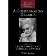 Companion to Derrida