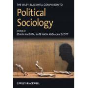 Companion to Political Sociology