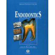 Endodontics, Volume II