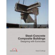 Steel-Concrete Composite Buildings