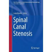 Spinal Canal Stenosis (New Procedures in Spinal Interventional Neuroradiology)