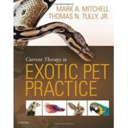 Current Therapy in Exotic Pet Practice