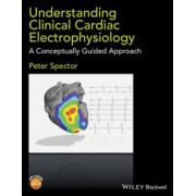 Understanding Cardiac Electrophysiology: A Conceptually Guided Approach