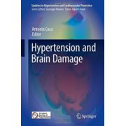 Hypertension and Brain Damage (Updates in Hypertension and Cardiovascular Protection)