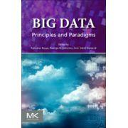 Big Data: Principles and Paradigms