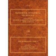 Neuroimaging, Part I (Handbook of Clinical Neurology)