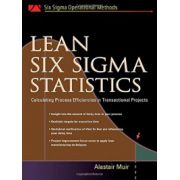 Lean Six Sigma Statistics: Calculating Process Efficiencies in Transactional Project (Six SIGMA Operational Methods)