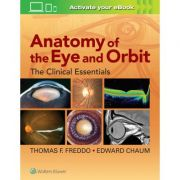 Anatomy of the Eye and Orbit: Clinical Essentials