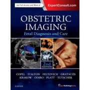 Obstetric Imaging: Fetal Diagnosis and Care (Expert Radiology)
