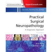 Practical Surgical Neuropathology: A Diagnostic Approach: A Volume in the Pattern Recognition Series