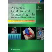 Practical Guide to Fetal Echocardiography: Normal and Abnormal Hearts