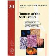 Tumors of the Soft Tissues (AFIP Atlas of Tumor Pathology, Series 4, Number 20)
