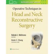Operative Techniques in Head and Neck Reconstructive Surgery (Operative Techniques in Plastic Surgery)