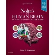 Nolte's Human Brain in Photographs and Diagrams